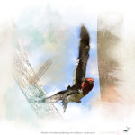Nature Art Michigan - Winter Duck Red Head
