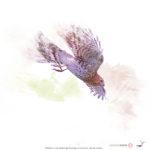 Wildlife in the Wetlands Art Prints