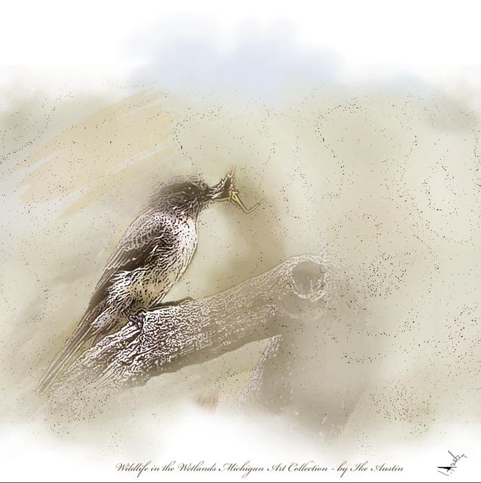 Wildlife in the Wetlands